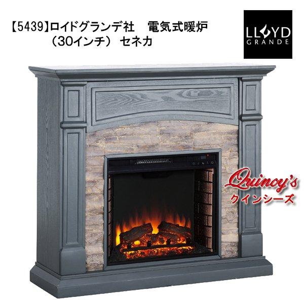 画像1: 【5439】 ロイドグランデ社(23インチ)電気式暖炉(セネカ) マントルピース (1)