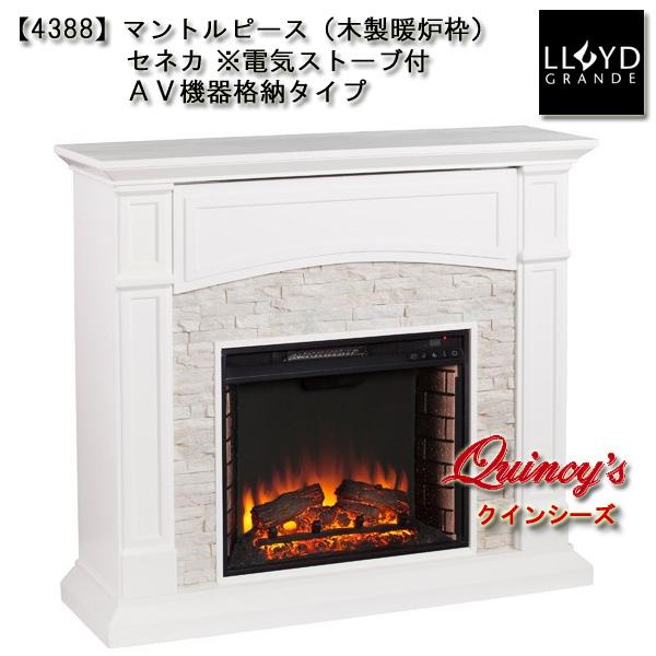 画像2: 【4388】 ロイドグランデ社(23インチ)電気式暖炉(セネカ)※AV機器格納タイプ マントルピース